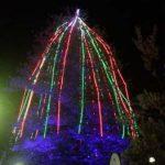 Christmas Tree Lighting 3