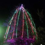 Christmas Tree Lighting 4